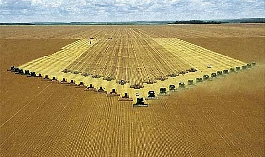 colheitadeiras plantadeiras cerrado